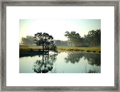 Misty Morning Pond Framed Print by Michael Thomas