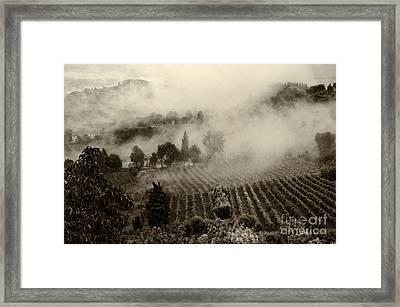 Misty Morning Framed Print by Silvia Ganora