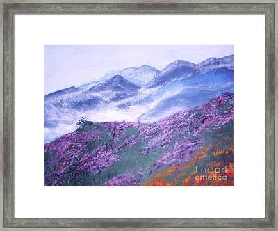 Misty Mountain Hop Framed Print by Donna Dixon