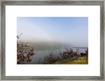 Misty Mylor Framed Print by Terri Waters
