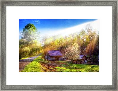 Misty Spring Morning Framed Print by Debra and Dave Vanderlaan