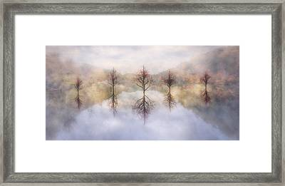 Misty Sunrise Framed Print by Debra and Dave Vanderlaan