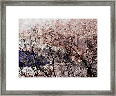 Misty Sunrise On Whidbey Island Framed Print by Susan Maxwell Schmidt