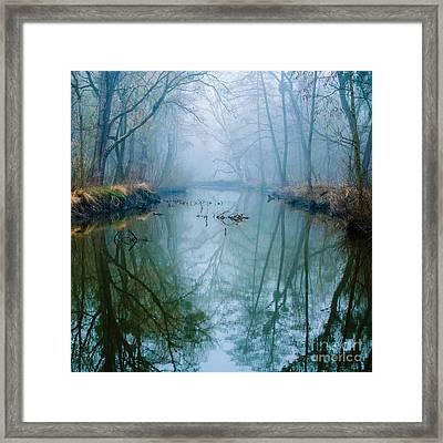 Misty Swamp Framed Print by Caio Caldas