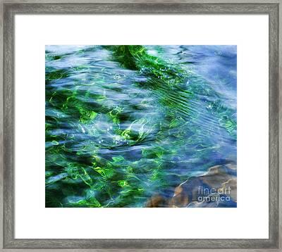 Misty Waters Framed Print by Terril Heilman