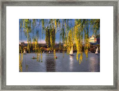 Mit Sailing Pavilion - Boston Framed Print by Joann Vitali