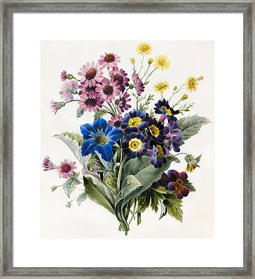 Mixed Flowers Framed Print by Louise D'Orleans