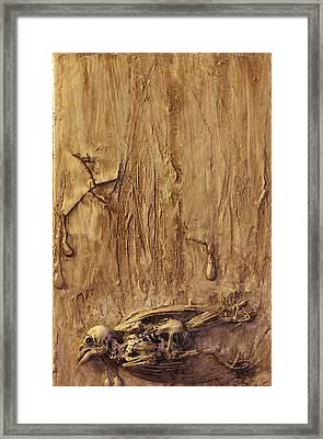 Mockingbird Framed Print by Joshua Allegrucci