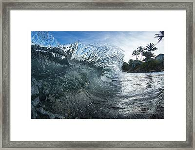 Mohawk Curl  -  Part 2 Of 3 Framed Print by Sean Davey