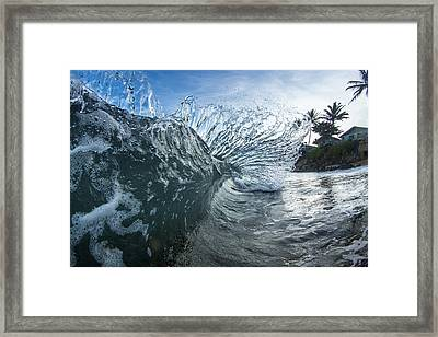 Mohawk Curl  -  Part 3 Of 3 Framed Print by Sean Davey