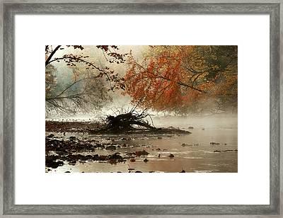 Mohican In Autumn Framed Print by Amanda Kiplinger