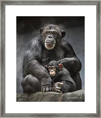 Mom And Baby Framed Print by Jamie Pham