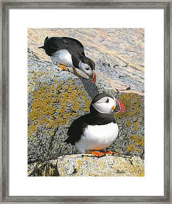Mom Watch Me Framed Print by Brent Ander