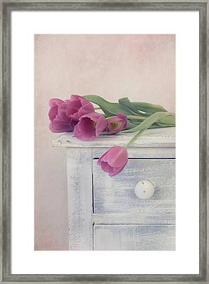 Moment Of Beauty Framed Print by Kim Hojnacki