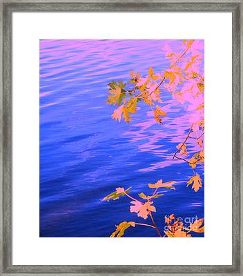 Moment Of Quiet Framed Print by Sybil Staples