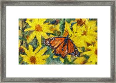 Monarch Butterfly On Flowers Framed Print by Dan Sproul
