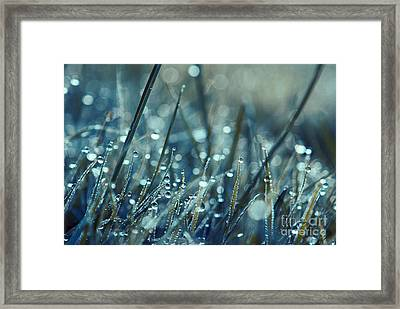 Mondo - S04 Framed Print by Variance Collections