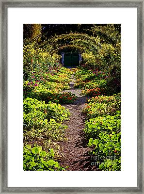Monet Garden Path  Framed Print by Olivier Le Queinec
