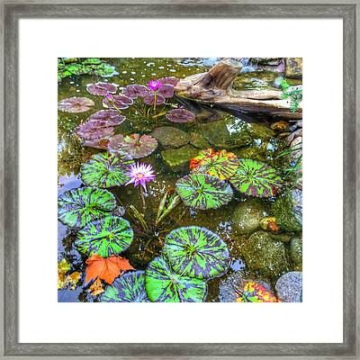 Monet's Pond At The Fair Framed Print by Jame Hayes