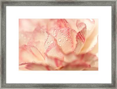Moning Freshness. Natural Watercolor. Touch Of Japanese Style Framed Print by Jenny Rainbow