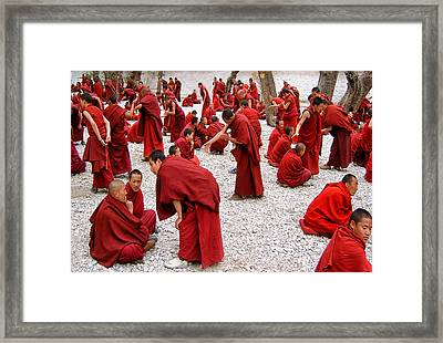 Monks Debating Framed Print by Yvette Depaepe
