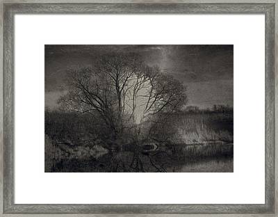 Monochrome Artistic Creek Tree Framed Print by Leif Sohlman