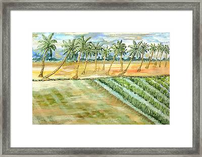 Monsoon At Field View - Kerala Framed Print by Thecla Correya
