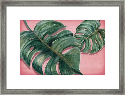 Monstera Leaf  Framed Print by Mark Ashkenazi