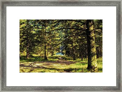 Montana Scenery Framed Print by Thomas Woolworth