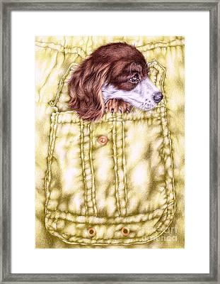 Montgomery Framed Print by Karen Marie