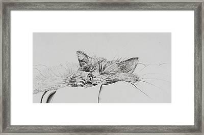 Monty  Sleepy Boy Framed Print by Vincent Alexander Booth