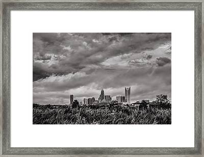 Moody Queen Framed Print by Chris Austin
