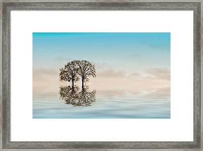 Moody Trees Framed Print by Jean Noren