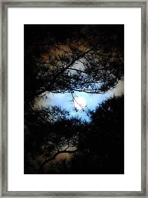 Moon Haze Framed Print by Trudi Southerland