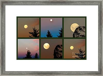 Moon Time Framed Print by Joyce Woodhouse