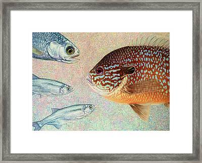 Mooneyes, Sunfish Framed Print by James W Johnson
