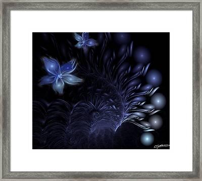 Moonflower Framed Print by Casey Kotas