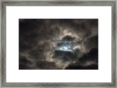 Moonglow Framed Print by Loree Johnson