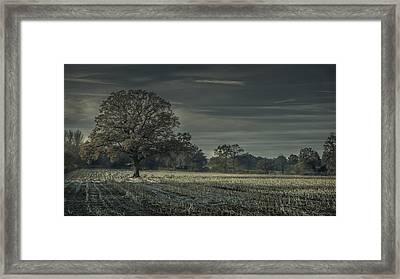 Moonlit Framed Print by Chris Fletcher