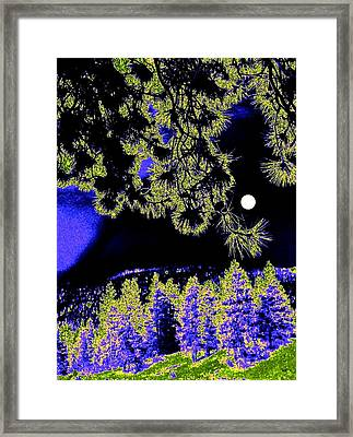 Moonlit High Country Framed Print by Will Borden
