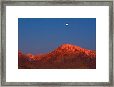Moonset At Dawn Above Mount Tom - Eastern Sierra California Framed Print by Ram Vasudev