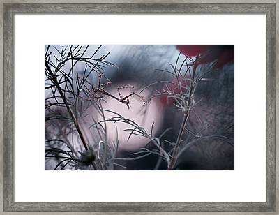 Moonwalker Framed Print by Fabien Bravin