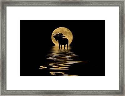 Moose In The Moonlight Framed Print by Shane Bechler