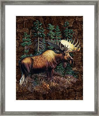 Moose Vignette Framed Print by JQ Licensing