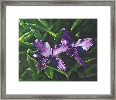 Morada Morning Framed Print by Joan Garcia