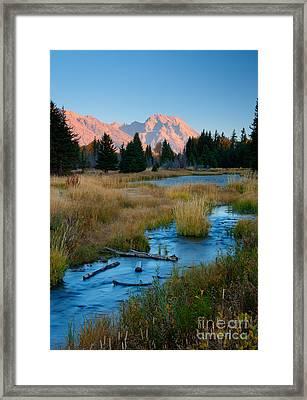 Moran Morning Framed Print by Idaho Scenic Images Linda Lantzy