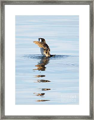 More Than A Mouthful Framed Print by Mike Dawson