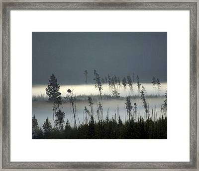Morning Along The Madison Framed Print by Marty Koch