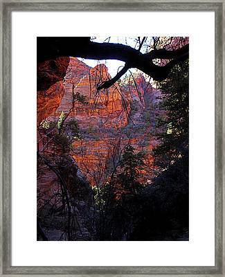 Morning At Zion National Park Framed Print by Rona Black