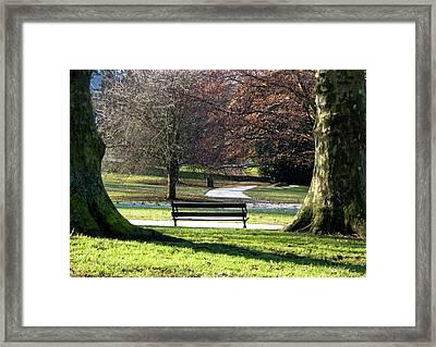 Morning Bliss Framed Print by Brian Roscorla